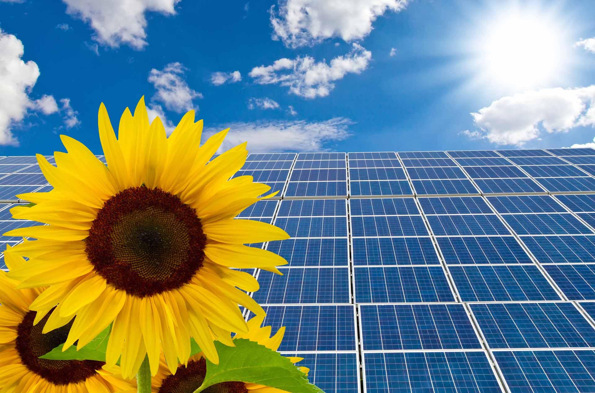 Solaranlage Förderung