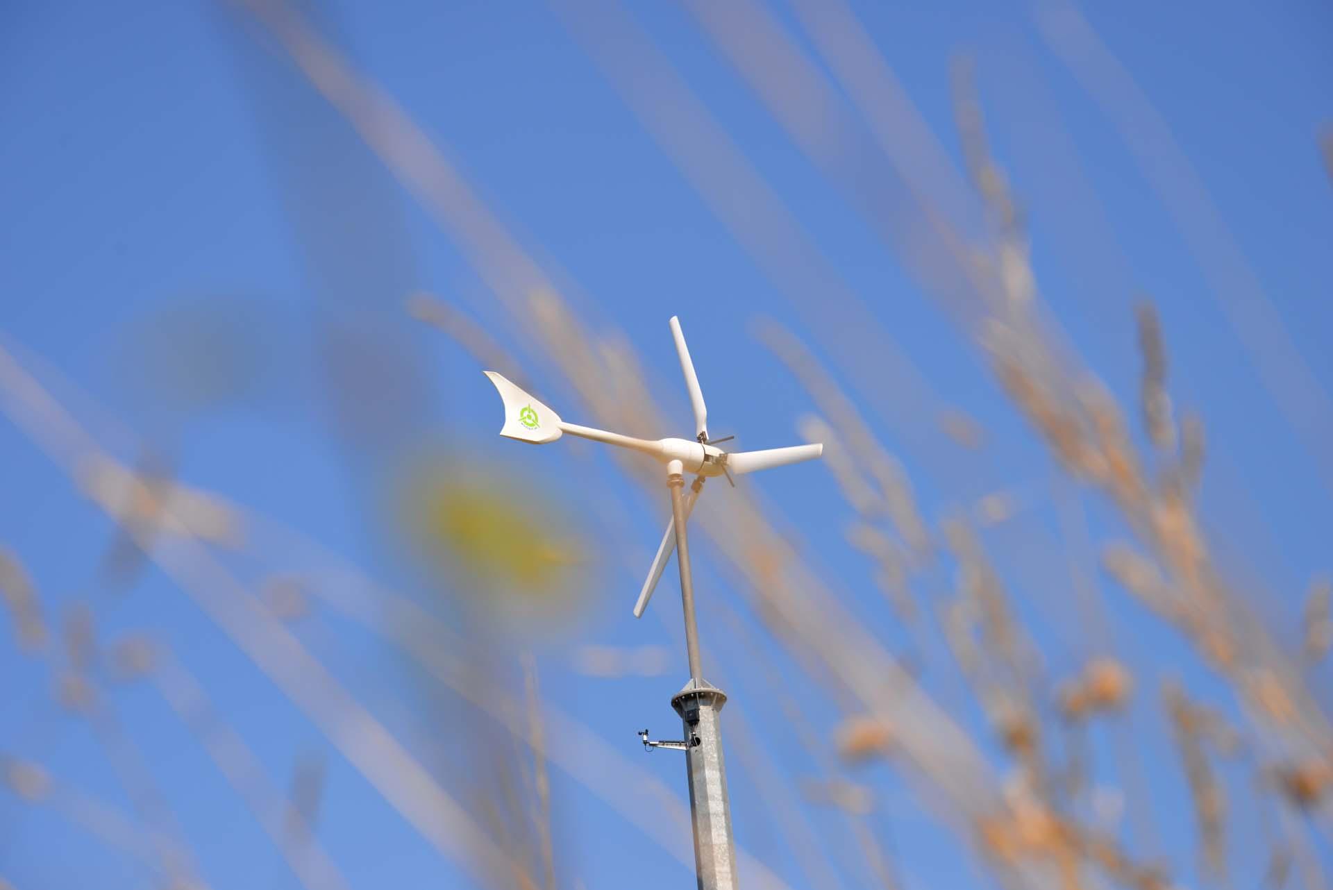 Windkraft - Windenergie nutzen